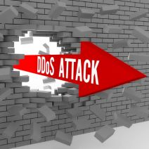 Tip of the Week: Spot a DDoS Attack Before it Takes Down Your Network